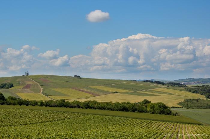 Burgundy Hills